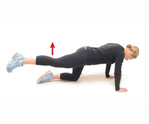 4 point kneeling – leg lift - Woodlands Physiotherapy Perth